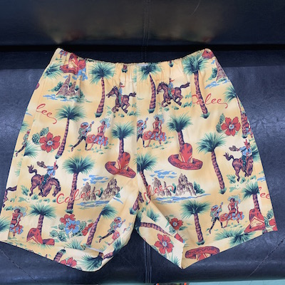 【ALLOVER WESTERN PATTERN SHORT PANTS】CL-20SS072*121